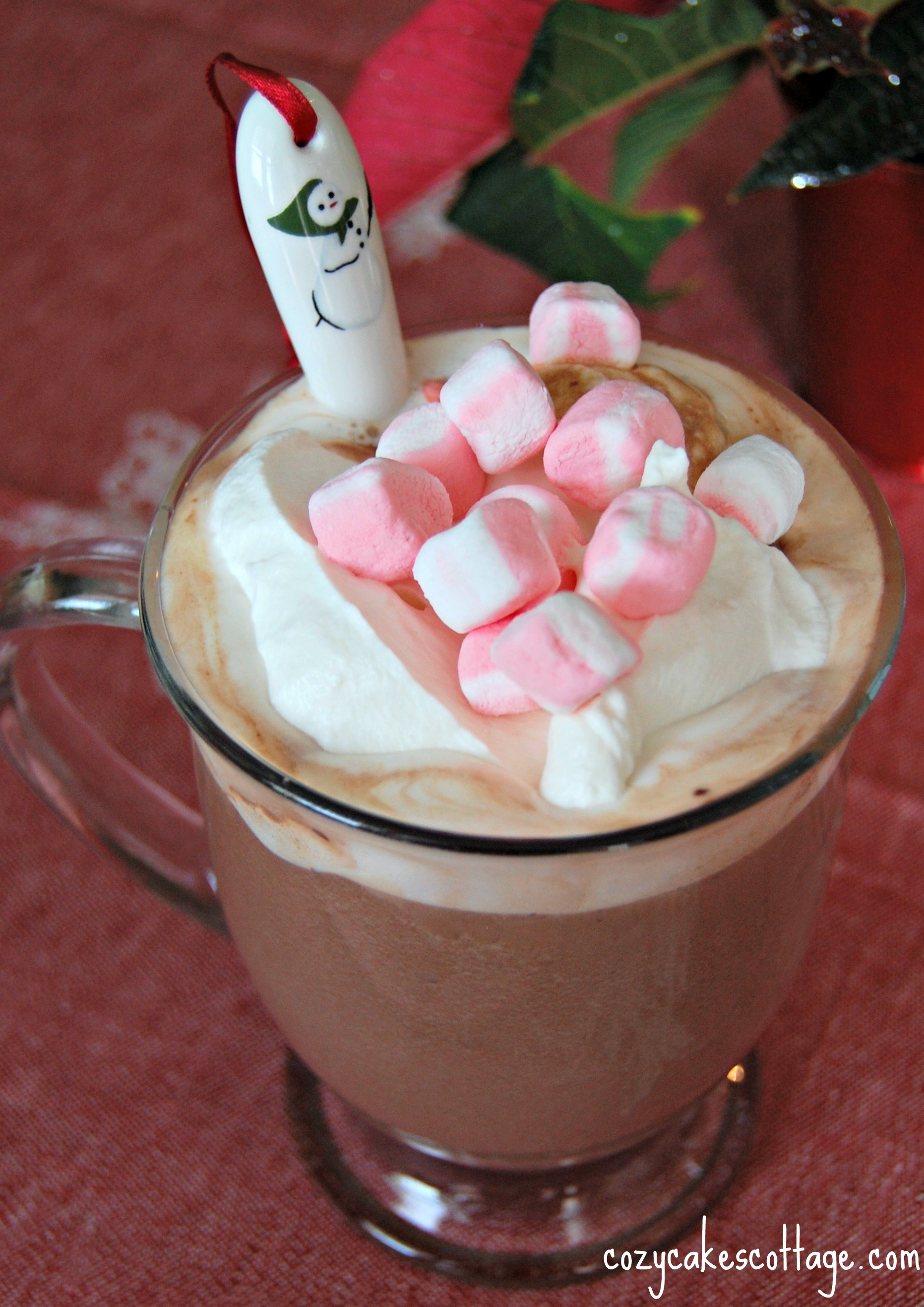 Danielle's Creamy Dreamy Hot Cocoa (with Homemade Whipped Cream)